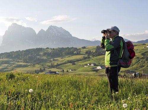 Woods & Wildlife of the Dolomites