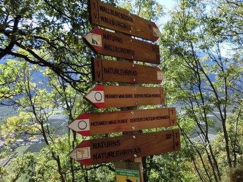 Laufen mit Laufguru Rosita Pirhofer & Chefkoch Markus