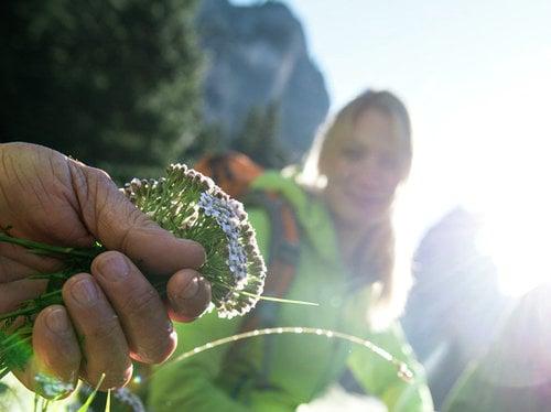 Herbstzauber im Bergschlössl