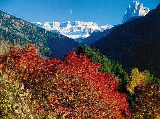 "Living the Dolomites ""Wandern und Kultur"""