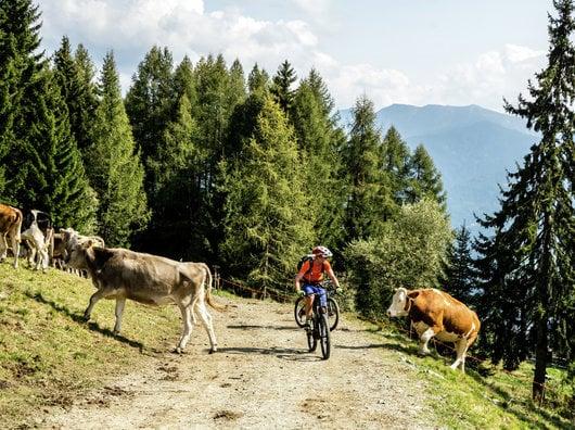 """4 giorni Pacchetto Mountainbike """"soggiorno doppio"""""""