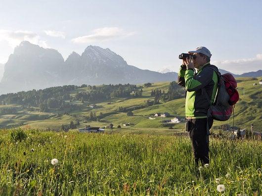 Fauna & Flora delle Dolomiti