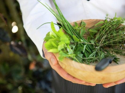 Riconoscere le erbe officinali e selvatiche, visitare castelli e degustare vini per 7 giorni