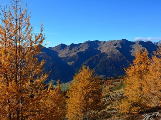 Klare Bergluft, goldiger Herbst